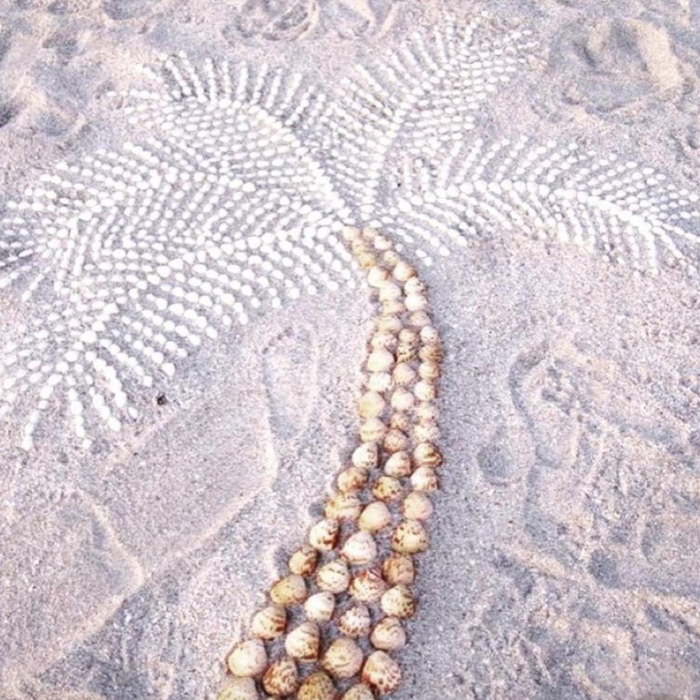Sand Palm